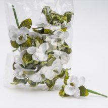 Mazzolino mini orchidea pz.12