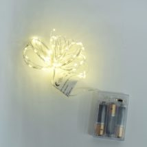 Led  60 luci a batteria interno