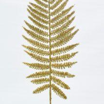 Felce boston stardust gold cm.51 pz.6