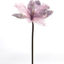 Cattleya tiffany pz. 3