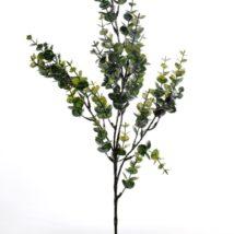Ramo eucalypto cm.71pz.3