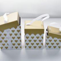 Take away boxes s/3p.10,5x10,2 g.14x17